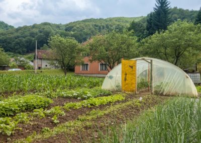 Prevent a Food Security Crisis in Montenegro